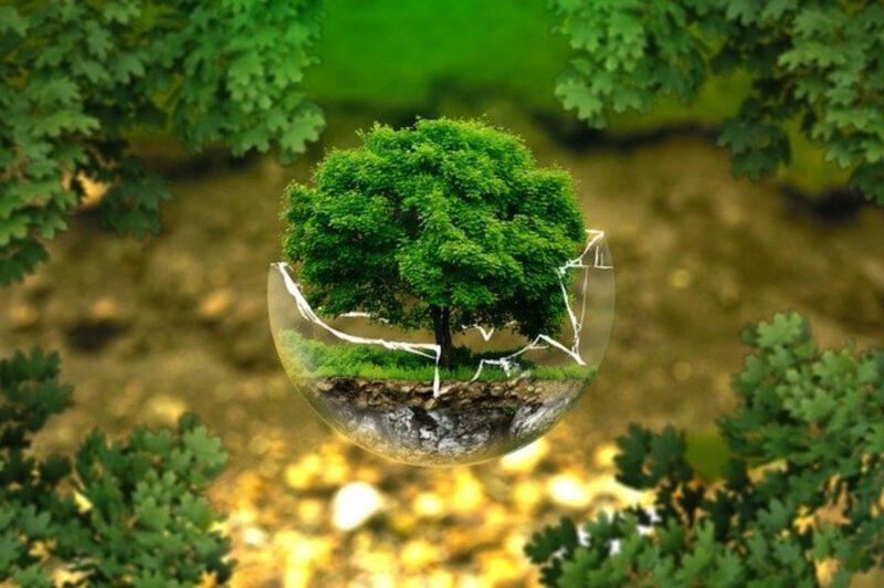Jak być bardziej eko? Skuteczne sposoby na less waste
